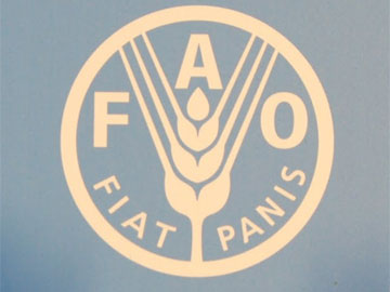 Food & Agriculture Organisation of the UN logo