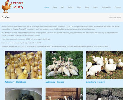 Orchard Poultry screenshot for FarOffice Limited
